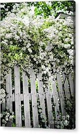 Garden With White Fence Acrylic Print by Elena Elisseeva