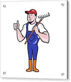 Gardener Farmer Hold Rake Thumbs Up Cartoon Acrylic Print by Aloysius Patrimonio