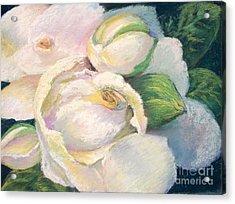 Gardenia 2 Acrylic Print