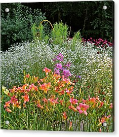 Gardens 101 Acrylic Print by Patsy Pratt
