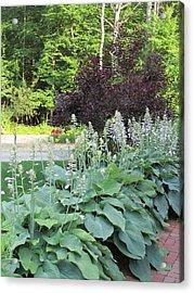 Gardens 111 Acrylic Print by Patsy Pratt