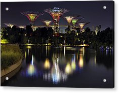 Gardens By The Bay Supertree Grove Acrylic Print by David Gn