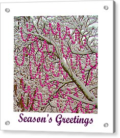 Garlands In The Snow Acrylic Print