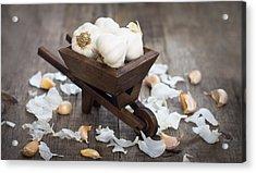 Garlic Cloves In A Miniature Wheelbarrow Acrylic Print