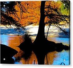 Garner State Park Acrylic Print by David  Norman