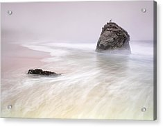 Garrapata Beach Fog Acrylic Print by Chris Frost