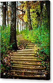 Acrylic Print featuring the photograph Garvin Heights Stairway by Kari Yearous
