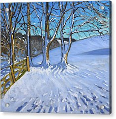 Gate And Trees Winter Dam Lane Derbyshire Acrylic Print by Andrew Macara