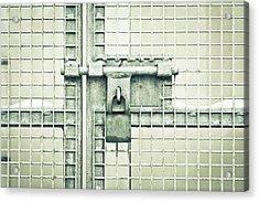 Gate Padlock Acrylic Print by Tom Gowanlock