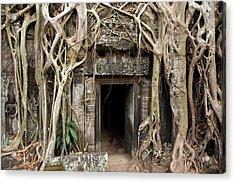 Gates Embraced By Jungle, Ta Prohm Acrylic Print