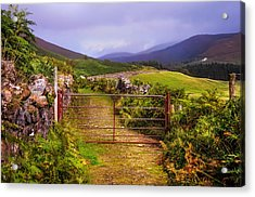 Gates On The Road. Wicklow Hills. Ireland Acrylic Print