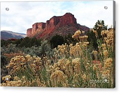 Acrylic Print featuring the photograph Gateway Colorado by Kate Avery