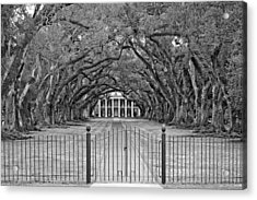 Gateway To The Old South Monochrome Acrylic Print by Steve Harrington