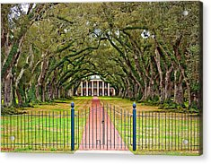 Gateway To The Old South Acrylic Print by Steve Harrington