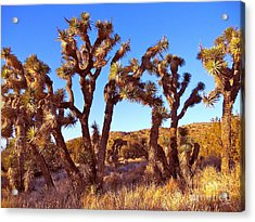 Gathering Acrylic Print by Gem S Visionary