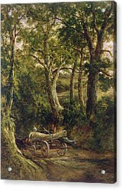 Gathering Timber Oil On Canvas Acrylic Print by Henry Earp