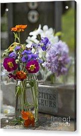 Gathering Wildflowers Acrylic Print by Edward Fielding