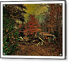 Gathering Wood For Winter  Acrylic Print by Dianne  Lacourciere