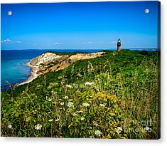 Acrylic Print featuring the photograph Gay Head Light And Cliffs by Mark Miller