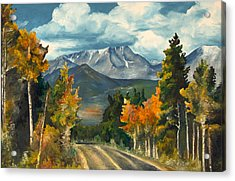 Gayle's Highway Acrylic Print by Mary Ellen Anderson