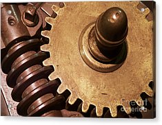 Gear Wheels Acrylic Print by Carlos Caetano