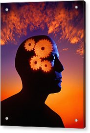 Gears Going In The Mind Acrylic Print by Don Hammond
