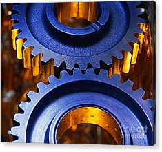 Gears Acrylic Print by Terry Why