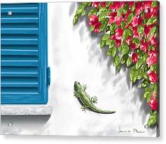 Geco Acrylic Print