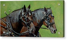 Acrylic Print featuring the painting Gee And Haw by Pattie Wall