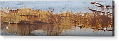 Geese Flying In Acrylic Print by Jani Freimann