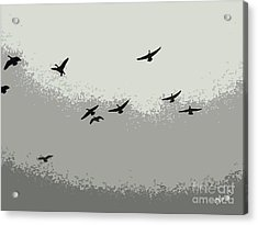 Acrylic Print featuring the photograph Geese In Sillouehette by Nina Silver