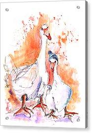 Geese In Spanish Winter Acrylic Print by Miki De Goodaboom