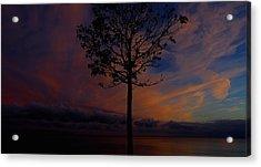 Genesis Tree Acrylic Print by Stephen Melcher