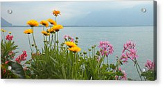 Geneva Flowers Acrylic Print by Teresa Tilley