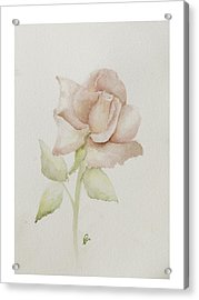 Gentle Grace Acrylic Print by Nancy Edwards