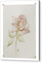 Gentle Grace Acrylic Print by Nancy Edwards