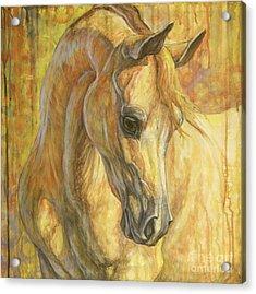 Gentle Spirit Acrylic Print by Silvana Gabudean Dobre