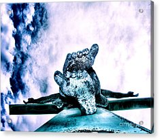 Acrylic Print featuring the photograph Gently Off The Edge by Heather King
