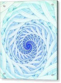 Geometric Spirals Acrylic Print by David Parker