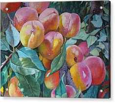 Georgia Peachers Acrylic Print