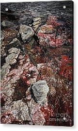 Georgian Bay Rocks Abstract II Acrylic Print