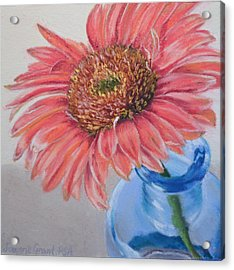 Gerbera Daisy With Blue Glass Acrylic Print