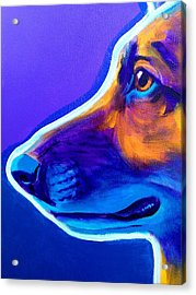 German Shepherd - Face Acrylic Print