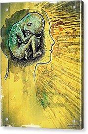 Gestation Of Ideas Acrylic Print