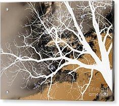 Acrylic Print featuring the photograph Gettysburg by Cheryl Del Toro