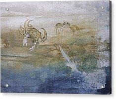Ghost Crab Acrylic Print by Nancy Gorr