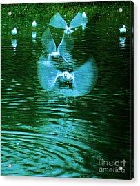 Ghost Flight Acrylic Print