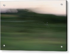Acrylic Print featuring the photograph Ghost Flight - Motion Art Print by Jane Eleanor Nicholas