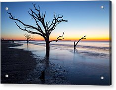 Ghost Trees Of Boneyard Beach 10 Acrylic Print