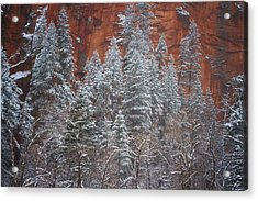 Ghosts Of Winter Acrylic Print by Peter Coskun